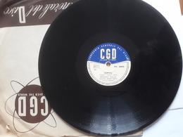 CGD  -  1958.  Serie  PV  Nr. 2093. Beniamino Maggio - 78 Rpm - Schellackplatten