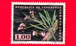 VENEZUELA - Usato - 1962 - Fiori - Orchidee - Brassavola Nodosoa Lindl. - 1.00 - P. Aerea - Venezuela