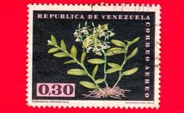 VENEZUELA - Usato - 1962 - Fiori - Orchidee - Epidendrum Difforme - 0.30 Posta Aerea - Venezuela