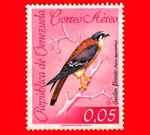 VENEZUELA - Usato - 1962 - Fauna - Uccelli - Falco Sparverius - 0.05 - P. Aerea - Venezuela