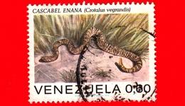 VENEZUELA - Usato - 1972 - Rettili - Serpenti - Crotalus Vegrandis - 0.60 - Venezuela