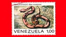 VENEZUELA - Usato - 1972 - Serpenti - Rettili - Snakes - Boa Constrictor - 1.00 - Venezuela