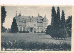CPA - Belgique - Chateau Royal De Ciergnon - Houyet