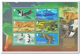 Gibraltar 2013, Postfris MNH, Birds, Animals - Gibraltar