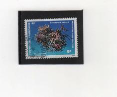 POLYNESIE  FRANCAISE   1991  Y.T. N° 377  Oblitéré - Oceania (1892-1958)