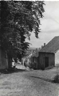 Beauraing NA10: Vue Du Calcaire 1948 - Beauraing