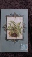 CPA MEDAILLON TABLEAU DECOR DORE FOUGERE GAUFFREE - Flowers, Plants & Trees
