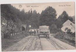 MAREDSOUS - ANHEE - ENTREE DU  TUNNEL - ATTELAGE - 1912 - Anhée