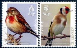 Europa 2019 - Guernsey Guernesey - Oiseaux (Linnet, Goldfinch) ** - 2019