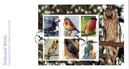 Europa 2019 - Guernsey Guernesey - FDC Feuillet Oiseaux (Puffin, Linnet, Bullfinch, Goldfinch, Starling, Kingfisher) - Collections, Lots & Séries