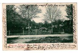 Gruss Aus Pritzwalk, Die Neuen Anlagen, Alte Ansichtskarte 1902 - Pritzwalk