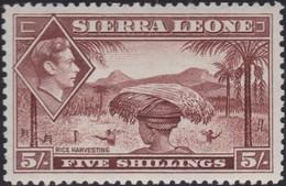 Sierra Leone    .   SG  .    198       .   **      .    MNH       .   /    .    Postfris - Sierra Leone (...-1960)
