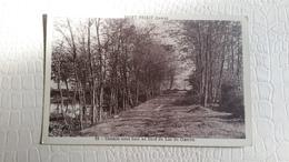 B5/chemin Sous Bois Au Bord Du Lac Du Clairon - Saint Priest
