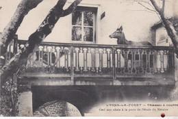 27 / LYONS LA FORET // CERF AUX ABOIS A LA PORTE DE L' ETUDE DU NOTAIRE - Lyons-la-Forêt