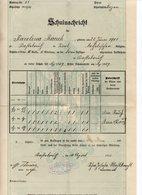 Castelrotto (Bolzano) - Pagella Scolastica Rilasciata Nel 1913 - (FDC14924) - Diplomi E Pagelle