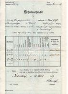 Villabassa (Bolzano) - Pagella Scolastica Rilasciata Nel 1909 - (FDC14925) - Diplomi E Pagelle