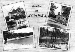 Belgium Groeten Uit Lommel Kattenbos Park Mill Graveyard Lake Postcard - Belgien