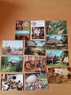Aubechies Beloeil L'archéosite 12 Cartes Postal - Lugares