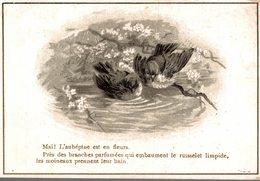CHROMO LAINAGES SOIERIES L. MARTIN LYON  MAI !  L'AUBEPINEEST EN FLEURS - Trade Cards