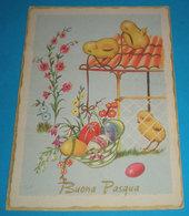 Auguri Buona Pasqua Pulcini Uova CARTOLINA Viaggiata 1964 - Pasqua