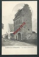 Environs De Bruxelles. (Steenokkerzeel) Donjon D'Humelghem. Nel, Série 11, N°197.   2 Scans. - Steenokkerzeel