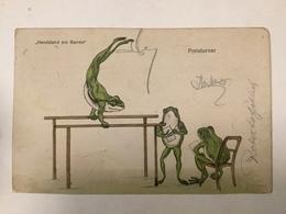 AK  FROG  FROGS  FROSCHE   LA GRENOUILLE  1908. - Tierwelt & Fauna