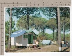 Campeggio In Pineta - Italie