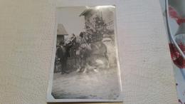 B5/carte Photo - Enfant Sur Un Cheval De Labour - Fotos