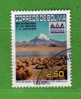 (Us3) BOLIVIA° - 2002 - Année De La Montagne Yvert. 1123 - Used Oblitéré Vedi Descrizione. - Bolivia