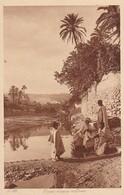 CPA Corso D'aqua Nell'oasi - L&L (40403) - Afrika