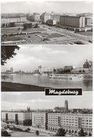 Magdeburg - Otto-von-Guericke Straße / Die Elbe Wilhelm-PeckßAllee - Magdeburg