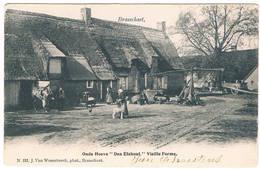 Brasschaet - Hoeve ''den Elshout'' 1904  (Geanimeerd) - Brasschaat