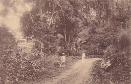 PC Ned. Indie - Acclimatiestation Poespo V./h. Sanatorium Tosari (40417) - Indonesien
