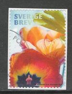 Zweden, Yv  Jaar 2019,   Gestempeld Op Papier - Schweden