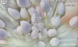 TARJETA TELEFONICA DE ISRAEL. (FLORES - FLOWERS) White, 811E. BZ-212. (073) - Flores