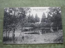 HERBEUMONT - ABBAYE DE ST. WANDRILLE DE CONQUES - L'ETANG AUX CANARDS ( Scan Recto/verso ) - Herbeumont