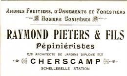 "CHERSCAMP "" Raymond Pieters & Fils - Rosiers Conifères Pépinièristes - Naamkaart - Wichelen"