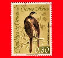 VENEZUELA - Usato - 1962 - Fauna - Uccelli -  Ciacialaca Culorossiccio - 0.30 - P. Aerea - Venezuela