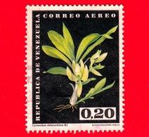 VENEZUELA - Usato - 1962 - Fiori - Orchidee - Cycnoches Chlorochilum - 0.20 - P. Aerea - Venezuela