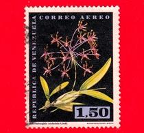 VENEZUELA - Usato - 1962 - Fiori - Orchidee - Schomburgkia Undalata Lindl - 1.50 - P. Aerea - Venezuela