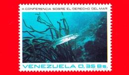 VENEZUELA - Usato - 1974 - Conferencia Sobre El Derecho Del Mar - 0.35 - Venezuela