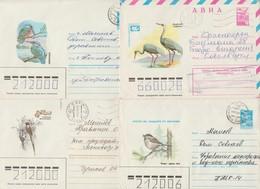 URSS Vers 1980. 10 Entiers Postaux. Oiseaux. Pivert, Martin-pêcheur, Grue, Oiseaux Du Paradis, Aigle... - Collections, Lots & Séries