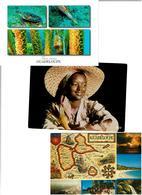 971 / GUADELOUPE /  Lot De 90 Cartes Postales Modernes écrites - Postkaarten