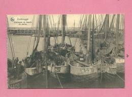 C.P. Zeebrugge  = Chaloupes  Au  Bassin  De  Pêche - Zeebrugge