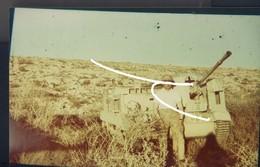 8 Beute Britische Carrier In Der Wüste. Libyen. Repro. - 1939-45