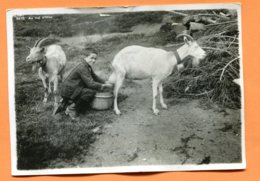 FR494, Au Val D'Illiez, La Traite Des Chèvres, Goat, Ziege, Cloche, 6576, Pli En Haut, GF, Non Circulée - VS Valais