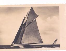 LA PALLICE - Souvenir De La Régate Des Yachts Au Large - France