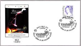 VINO De La Tierra De Un VOLCAN ACTIVO - Wine From Land Of An ACTIVE VOLCANO. Milo, Catania, 2012 - Vinos Y Alcoholes