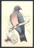 Portugal MADEIRA 1987 Maximum Card: Fauna Bird Vogel Oiseau: Madeira Laurel  Long-toed Pigeon (Columba Trocaz) - Vögel