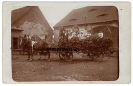 Pferde Kutsche, Erntewagen 1931, Beschriftet Körbitz, Krbice (?), Alte Foto Postkarte - Czech Republic